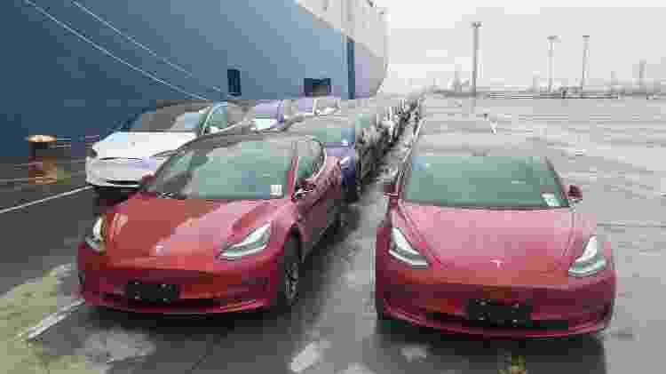 Tesla Model 3, modelo mais acessível da marca, é hoje o carro elétrico mais vendido do mundo -  Zhao Yun/VCG via Getty Images