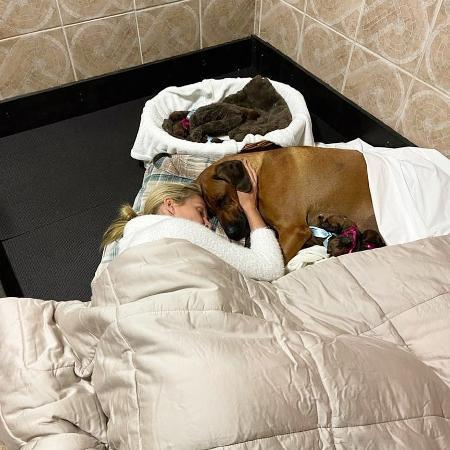 Ana Hickmann dorme ao lado de Esmeralda após cachorra parir dez filhotes - Reprodução/Instagram