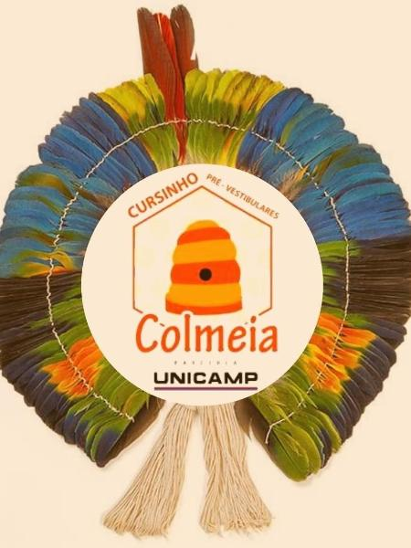 Cursinho Colmeia é dedicada aos estudantes indígenas - Cursinho Colmeia