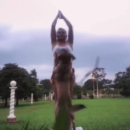 Leticia Colin é interrompiada por cachorro enquanto praticava yoga - reprodução/instagram