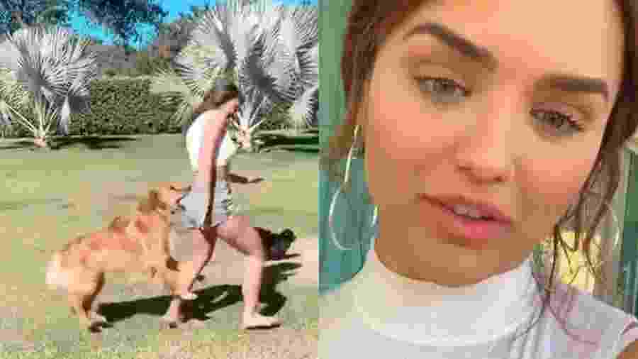 Rafa Kalimann leva mordida de cachorro - Reprodução/Instagram