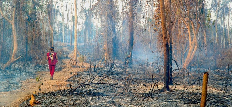 Incêndio em comunidade Huni Kuin, no Acre, em agosto de 2019 - Centro de Cultura Indígena Huwã Karu Yuxibu
