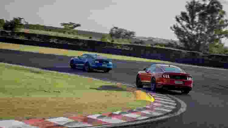 Mustang Mach 1 traseira na pista - Divulgação - Divulgação
