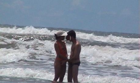 Safadeza à beira mar