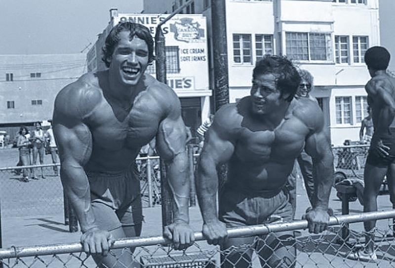 dbfbe13f0 Quatro segredos e o treino de Schwarzenegger para ter peito e costas fortes  - 02 04 2019 - UOL VivaBem