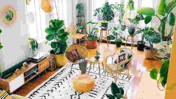"""Plantas ajudam na """"respiração"""" dos ambientes - Reprodução/Pinterest - Reprodução/Pinterest"""