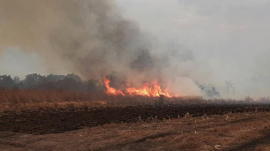 Em plena pandemia, incêndio na região de Bonito foi mais um golpe contra o turismo - Fundação Neotrópica do Brasil