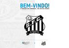 Santos retorna ao esporte eletrônico como Santos e-Sports (Foto: Divulgação)