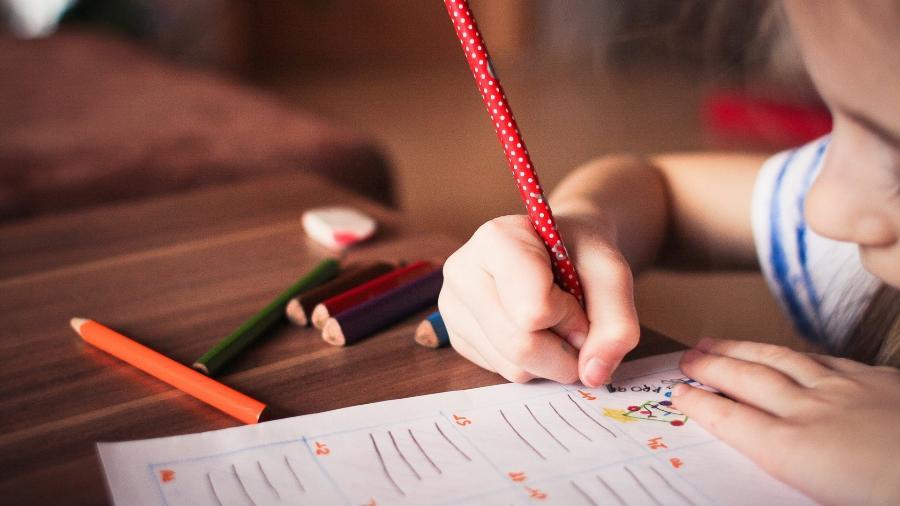 Projeto de lei de educação domiciliar deve ser votado na Câmara até o fim deste mês - Reprodução/Pixabay