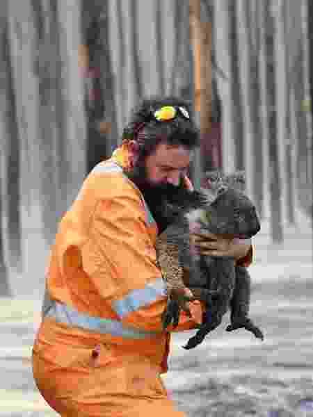 Homem resgata coala perto de Cape Borda, em Kangaroo Island - Reuters - Reuters