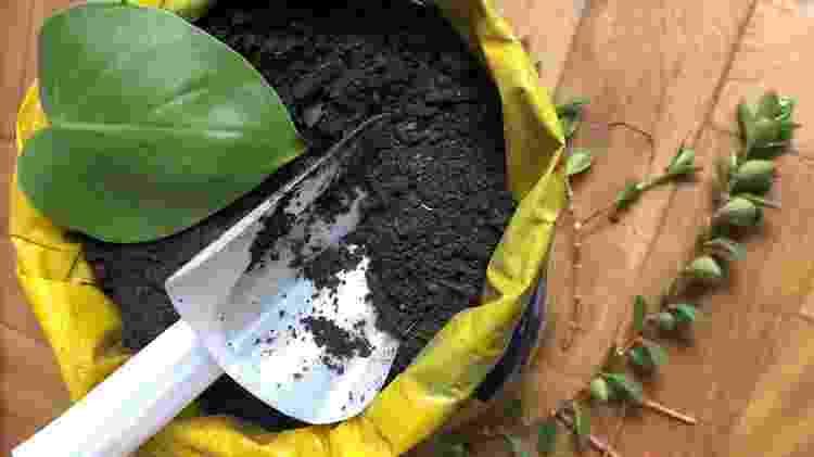 O solo que decidir usar é crucial para a longevidade de sua horta - Divulgação