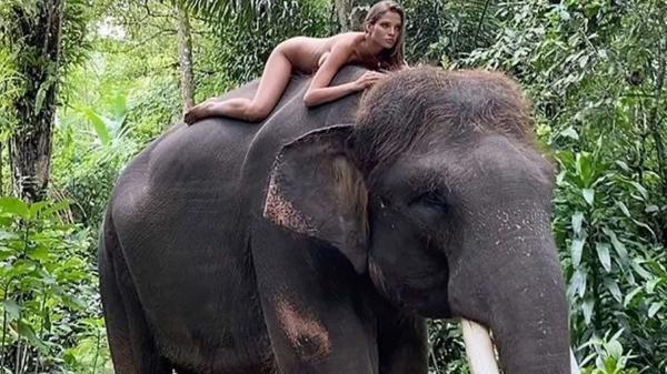 A modelo de 22 anos, Alesya Kafelnikova, posa em cima de um elefante durante viagem a Bali, na Indonésia