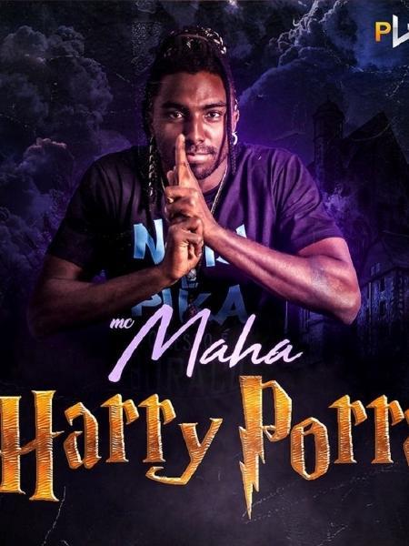 """Capa do single de """"Harry Porra"""" - Divulgação"""