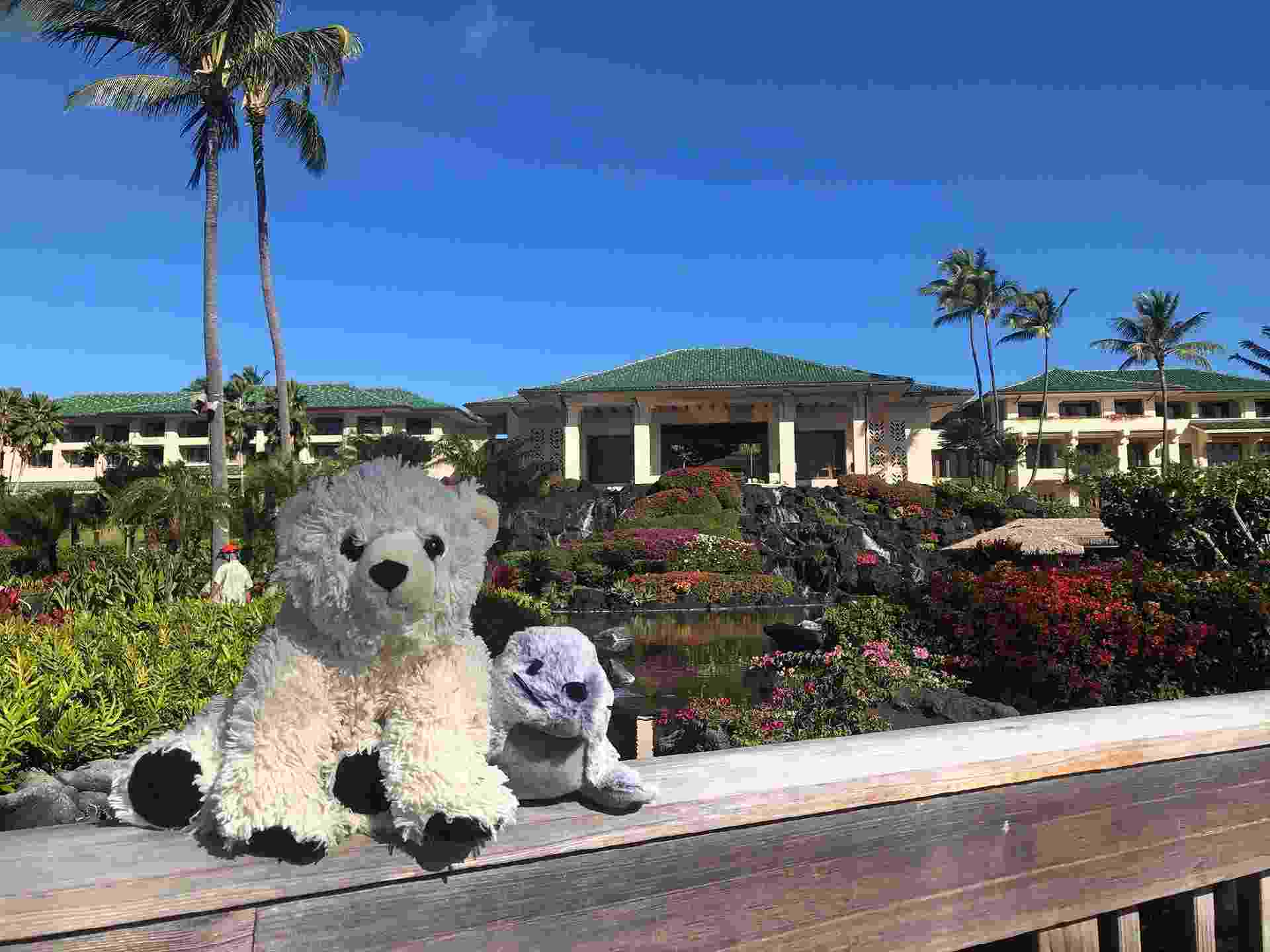 Este urso de pelúcia foi esquecido -- e ganhou suas próprias férias do dono - Reprodução/Twitter