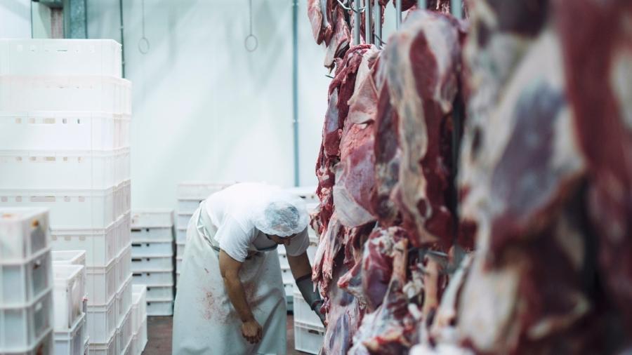 Santa Catarina, o maior Estado produtor de carne suína do Brasil, também ponderou revogar suas próprias regras - Istock