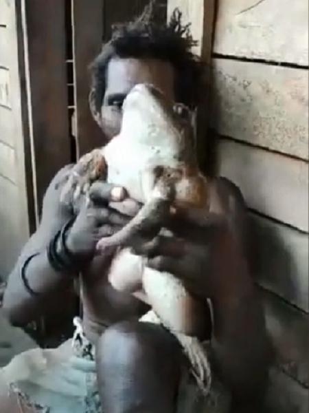 Sapo gigante encontrado em Ilhas Salomão - Reprodução/Youtube