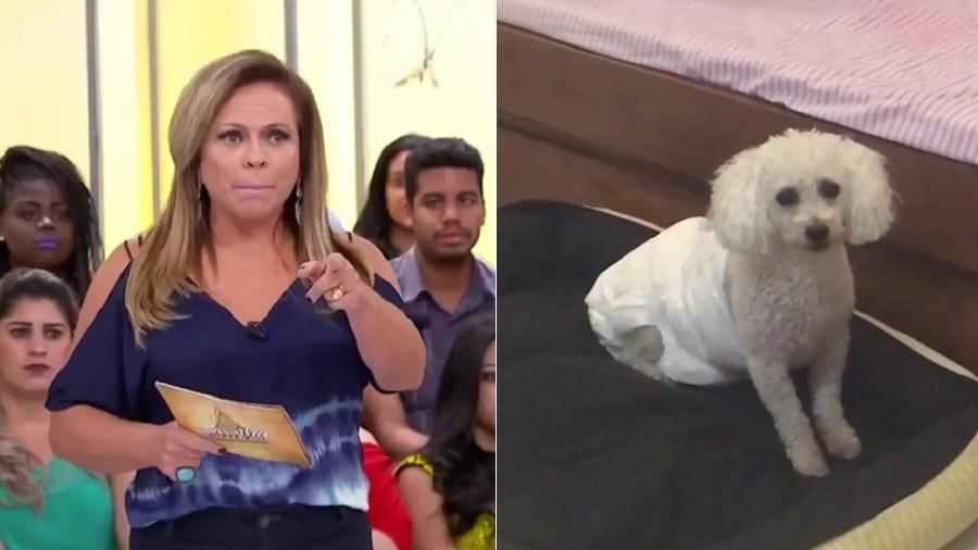 Montagem com Christina Rocha e Billy, seu cachorrinho - Montagem/UOL