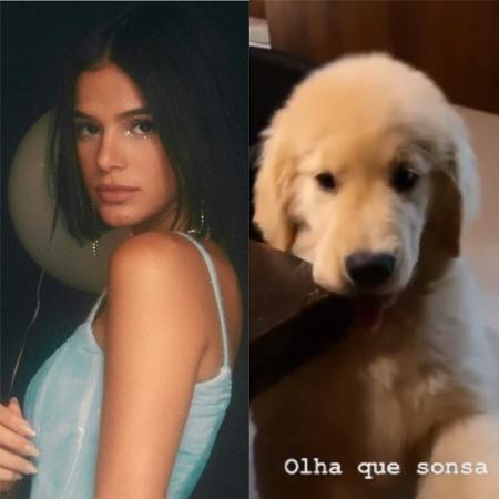 Bruna Marquezine e sua nova cachorrinha, Amora - Reprodução / Instagram