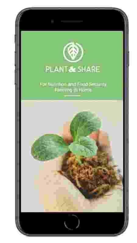 Projeto Plant & Share, finalista de premiação da Nasa - Divulgação - Divulgação