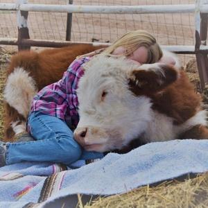 Reprodução/Facebook Aimee?s Farm Animal Sanctuary