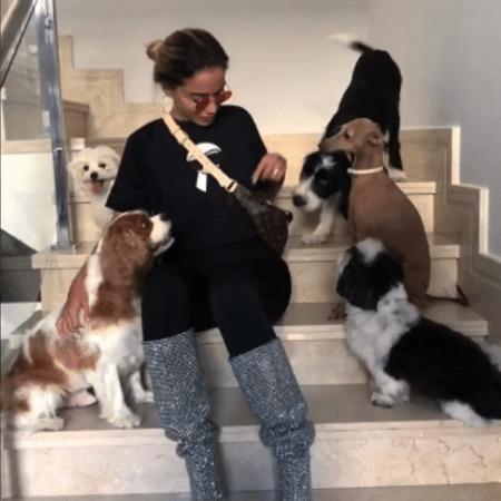 Anitta com seus cães - Reprodução/Instagram/anitta