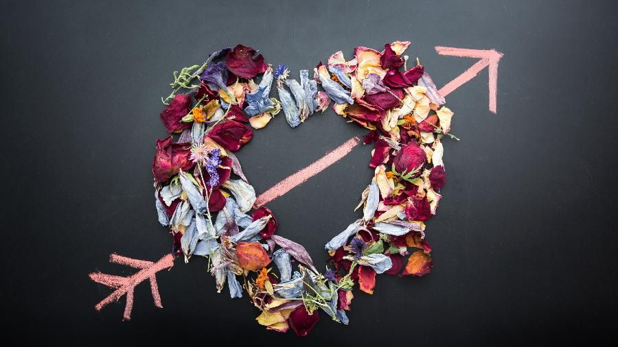 Amor em fevereiro - Denise Johnson/Unsplash