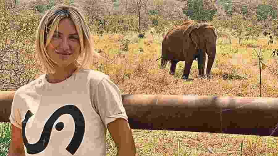 Giovanna Ewbank visita santuário de elefantes e pede que seguidores não frequentem zoológicos - Reprodução/instagram