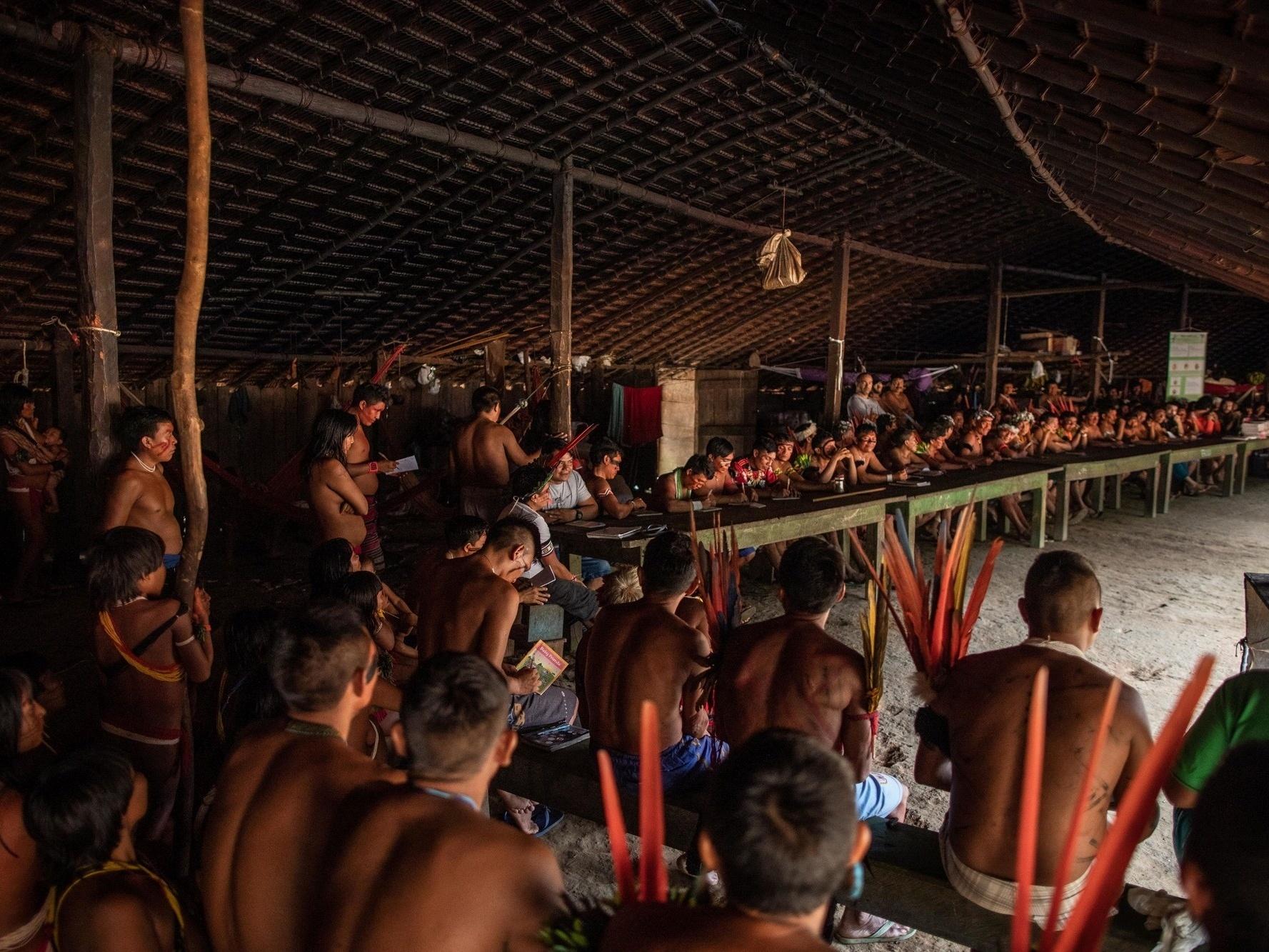Ianomâmis denunciam ataque a tiros na terra indígena em RR