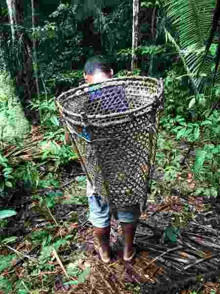 Marlon, extrativista de castanha-do-Pará e coco babaçu de uma comunidade ribeirinha na Resex do Rio Iriri - Bela Gil - Bela Gil