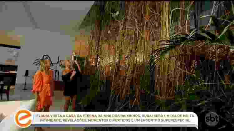Xuxa tem um viveiro com 24 pássaros no meio da sala de estar de sua mansão - Reprodução - Reprodução