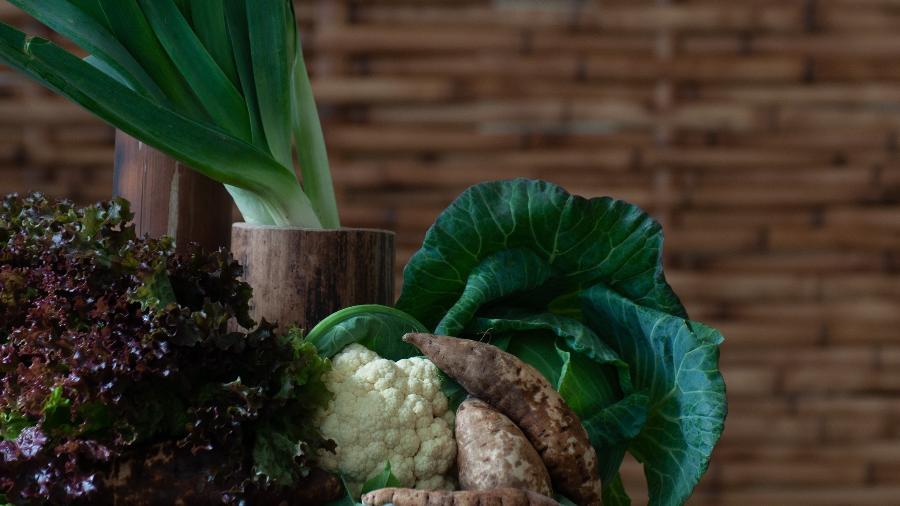 """""""Ainda não há comprovações definitivas, mas temos indicações importantes de que os alimentos orgânicos têm, sim, inúmeras vantagens em relação aos alimentos produzidos no sistema convencional"""" - Henrique Kugler"""