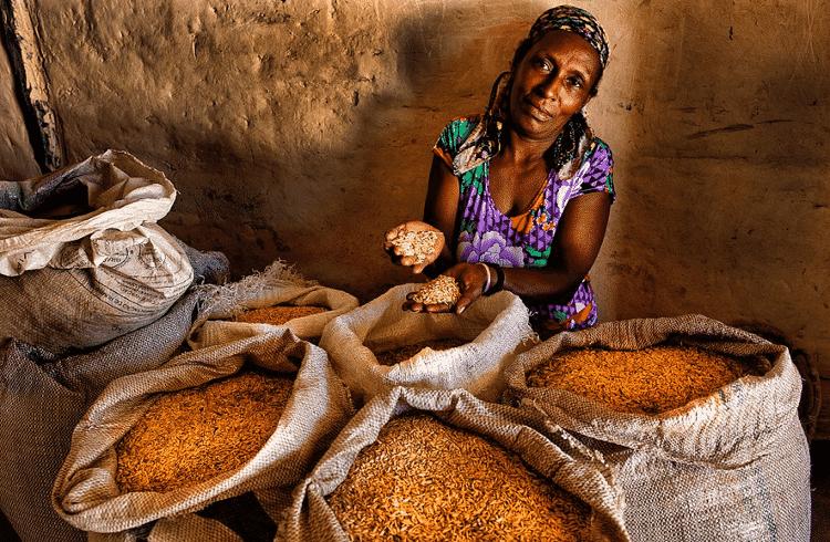 Dirani Francisco Maia, da comunidade de Vão de Almas, com sua colheita de arroz - Sergio Amaral/MDS - Sergio Amaral/MDS