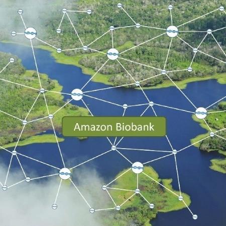 Amazon Biobank é biobanco com DNA de plantas - Divulgação