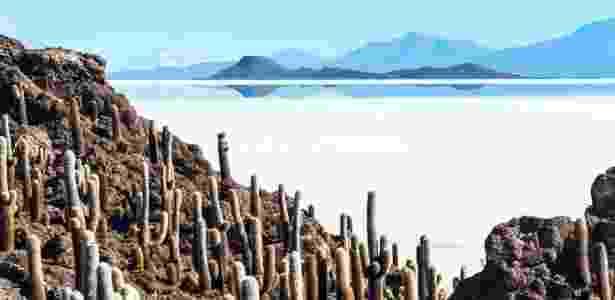 Uma ilha de cactos aparece no meio do deserto de sal da Bolívia - Getty Images - Getty Images