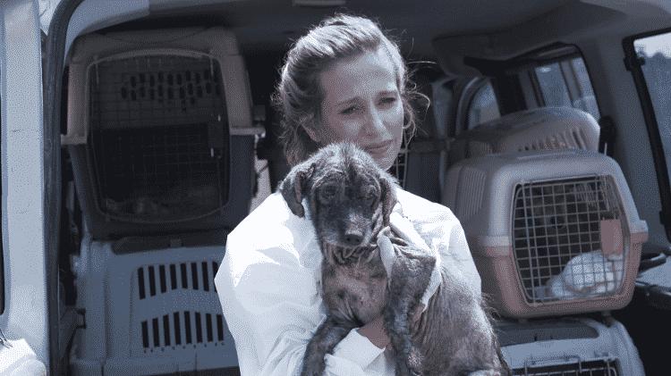 Livre Acesso - Luisa Mel resgata cachorro - Reprodução - Reprodução