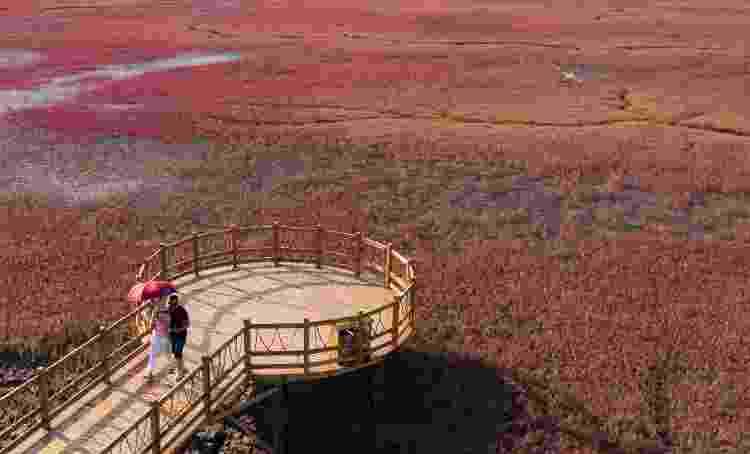 Sequências de passarelas facilitam ver o fenômeno natural e as diferentes tonalidades que a Praia Vermelha assume de acordo com a estação do ano - VCG via Getty Images - VCG via Getty Images