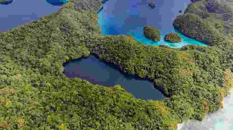 Visão aérea do lago do arquipélago de Palau onde é possível nadar com águas-vivas - Norimoto/Getty Images/iStockphoto