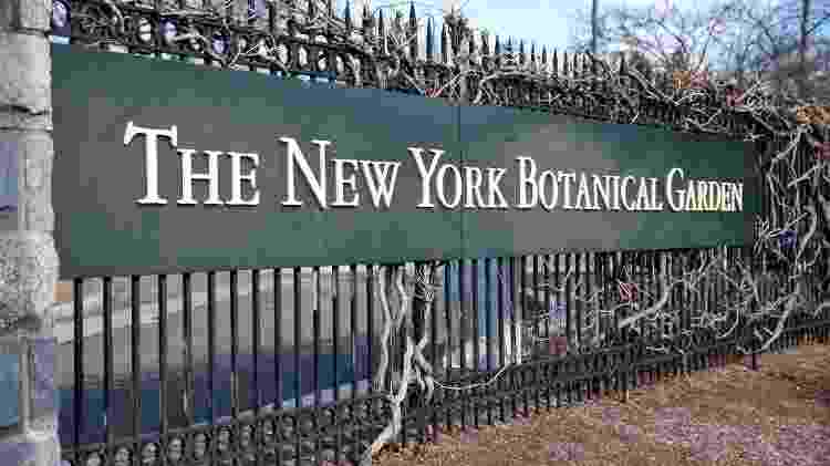 New York Botanical Garden oferece atração especial para crianças - Jayson Photography/iStock