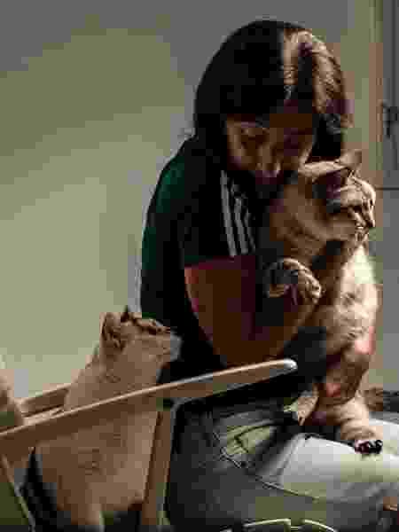 Marilisa Oliveira é professora e dona dos gatinhos Pierre e Vanila  - Fernando Moraes/UOL - Fernando Moraes/UOL