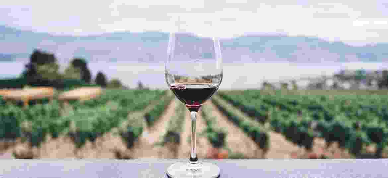 """Em meio à quarentena, vinícolas apostam nas """"degustações"""" virtuais - Kym Ellis/Unsplash"""