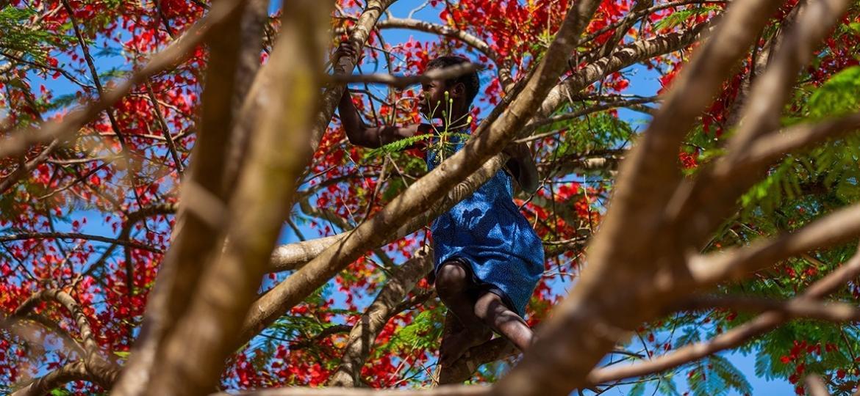 Grãos: Foto de Sheila Manuel (Moçambique) - Victor Balde/Jouis Fotografia