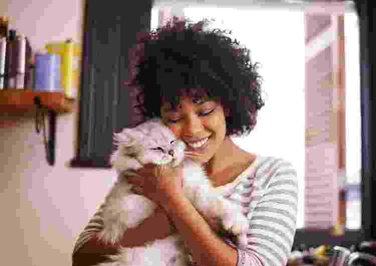 Casa preparada é um dos pré-requisitos para adotar um gatinho - Getty Images - Getty Images
