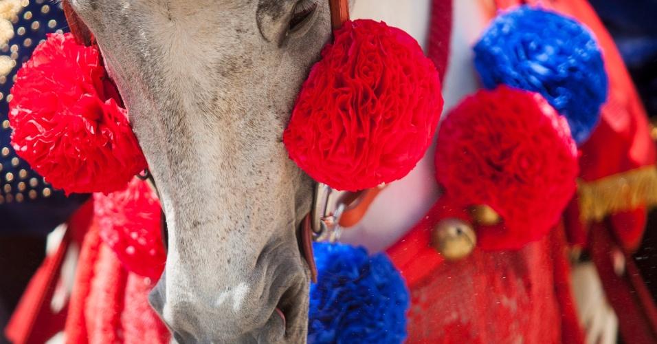 8.jan.2016 - Cavalo é enfeitado para o Carnaval a Cavalo de Bonfim, em Minas Gerais