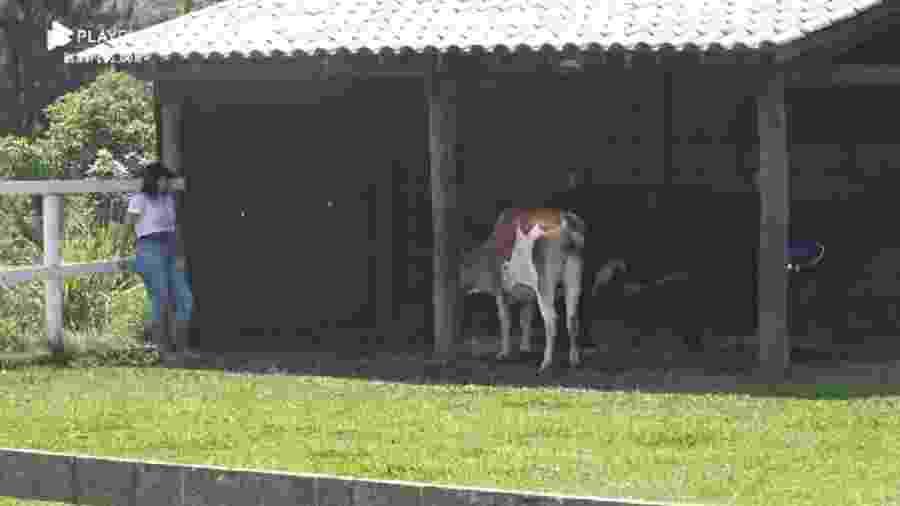 A Fazenda 2020: Victória Villarim conversa com animais em dia de roça - Reprodução/RecordTV