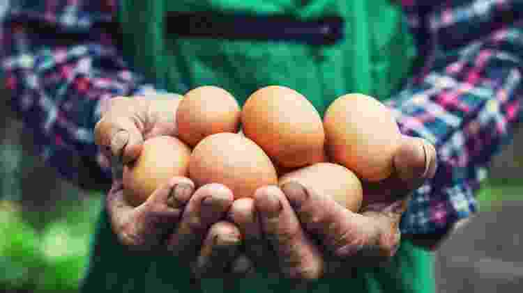 Ovos e laticínios - iStock - iStock