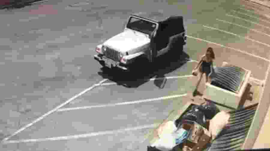 Mulher joga fora saco com sete filhotes de cachorro em Indio, Califórnia, durante o festival Coachella - Reprodução/TMZ