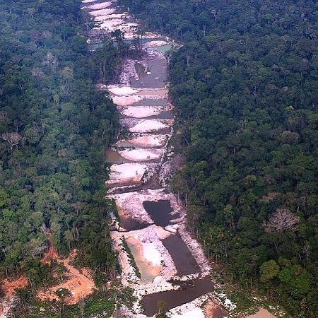 Em junho, o desmatamento foi de 1.062 km², o pior número desde o início das medições, em 2015 - MARIZILDA CRUPPE / AMAZÔNIA REAL| FOTOS PÚBLICAS