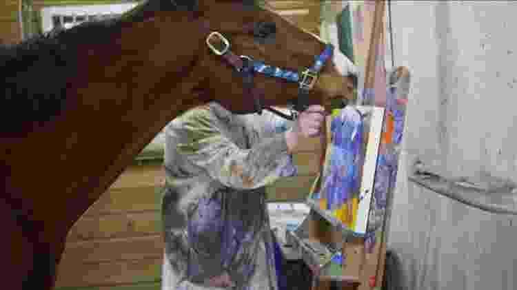 Metro, o cavalo de corrida de 14 anos, que virou pintor - Reprodução/BBC - Reprodução/BBC