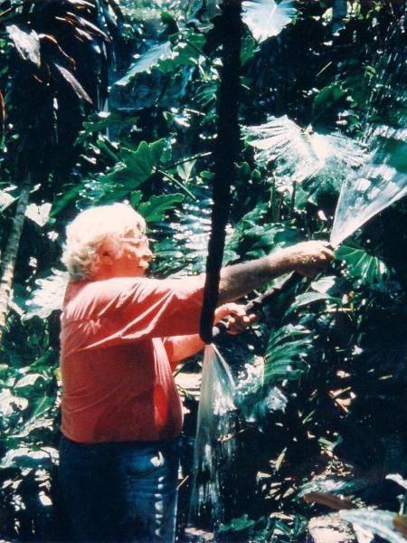 Burle Marx aguando a vegetação do sítio, que agora foi considerado Patrimônio Mundial - Reprodução Instagram