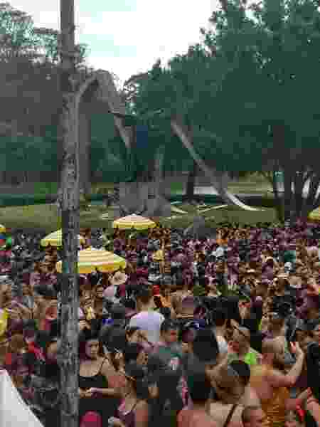 Monumento no Ibirapuera invadido pelos foliões - Patricia Larsen/UOL